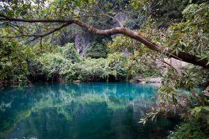 Phong Nha-Khe Bang National Park